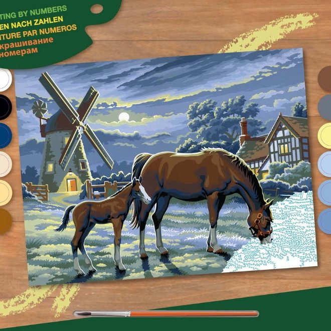 Senior Painting By Numbers Evening Pasture Design Box