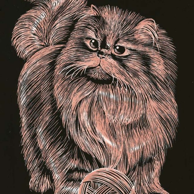 Artfoil Copper Persian Cat Design