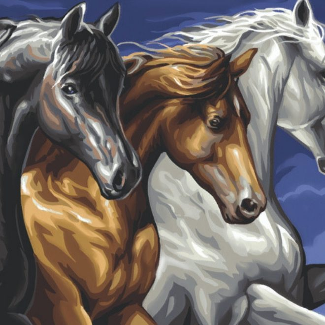 Senior Painting By Numbers Wild Horses design