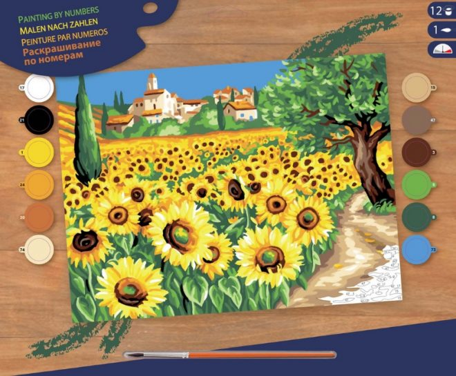 Senior Painting By Numbers Sunflowers Box