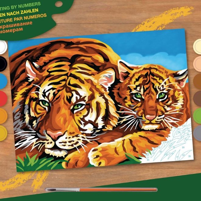 Senior Painting By Numbers Tigers 1039 Box