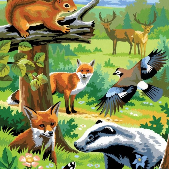 Painting By Numbers Woodland Animals design