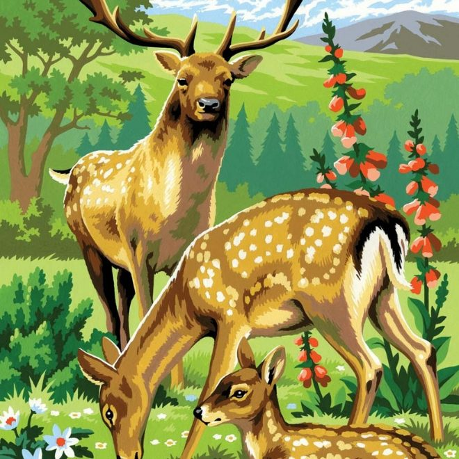 Painting By Numbers Woodland Animals picture