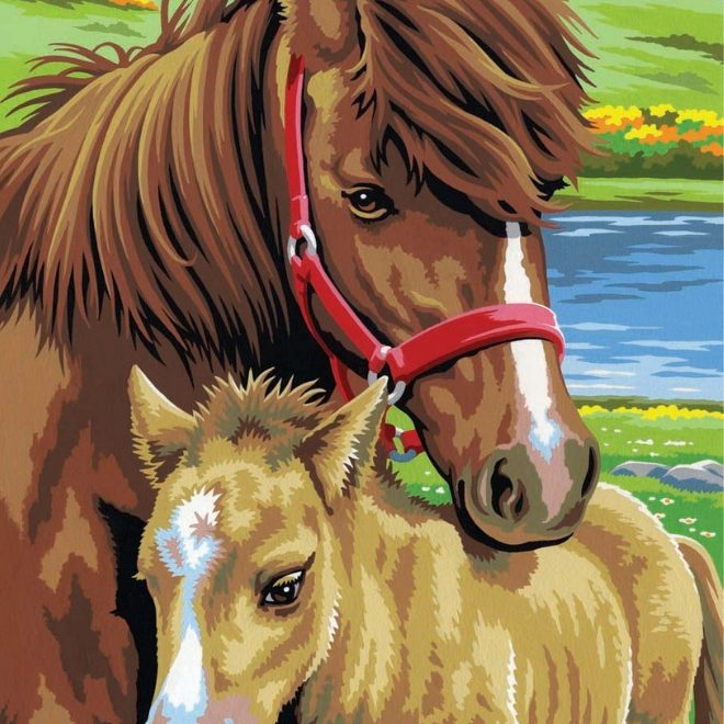 Get crafty with Painting By Numbers Horses twin pack