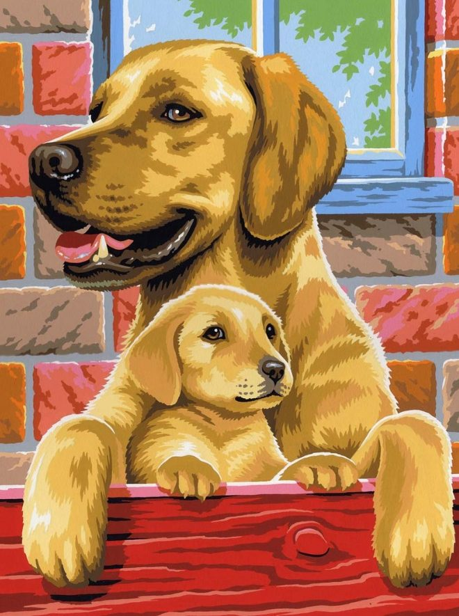 Adorable Painting By Numbers Dogs design