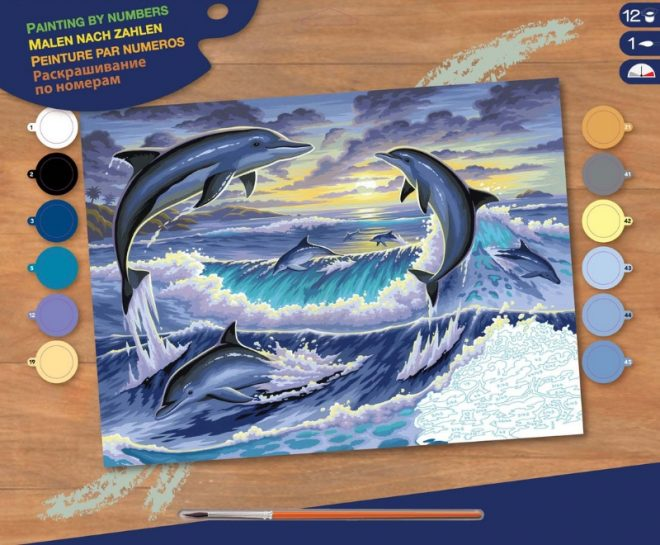 Senior Painting By Numbers Dolphin Sunrise craft project