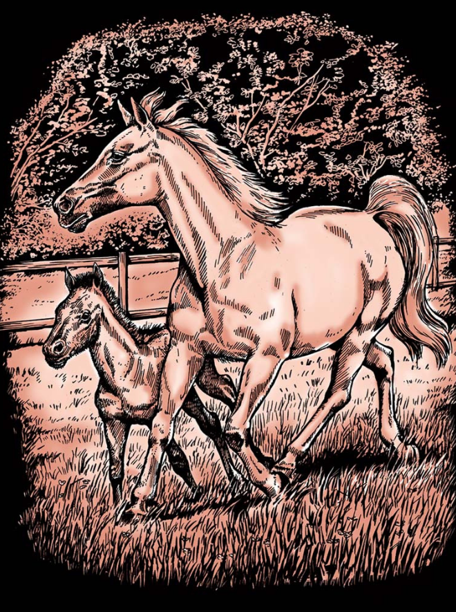 Scratch Art Copper kit includes Horse & Foal picture