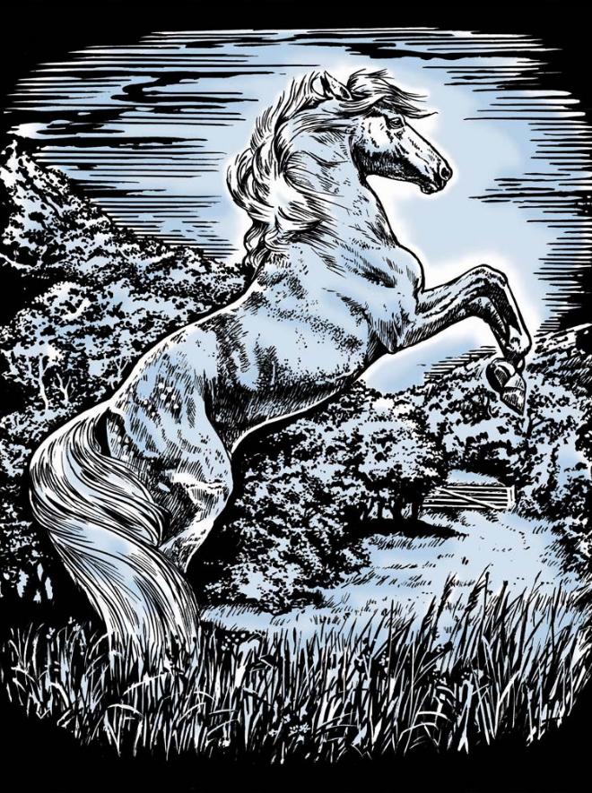 Scratch Art Stallion Artfoil Silver project
