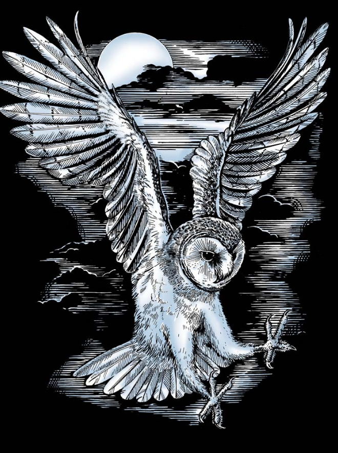 Scratch Art Barn Owl project from the Artfoil Silver range