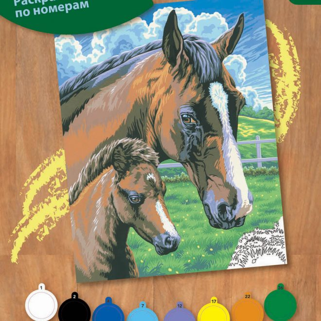 Painting by numbers Horse & Foal design