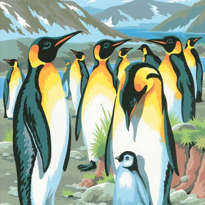 Create a beautiful Penguins picture with our painting by numbers kit