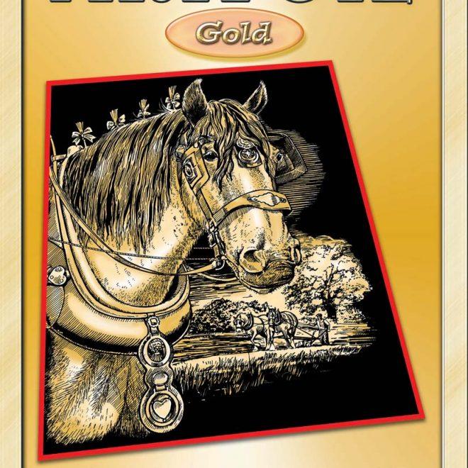 Scratch Art Shire Horse craft