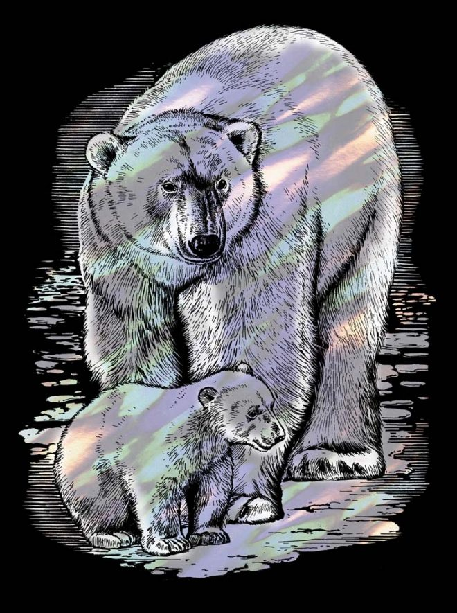 Scratch Art Polar Bear craft project