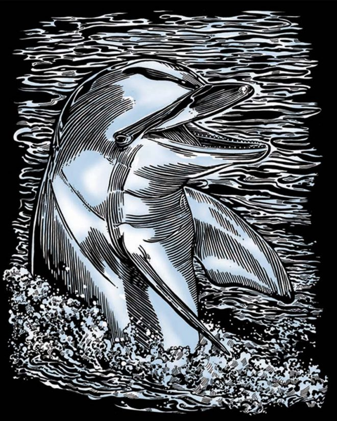 Scratch Art Dolphin picture from the Artfoil Silver range