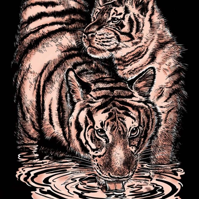 Scratch Art Tiger & Cub craft project