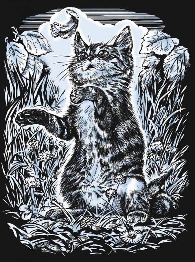 Scratch Art Kitten craft project