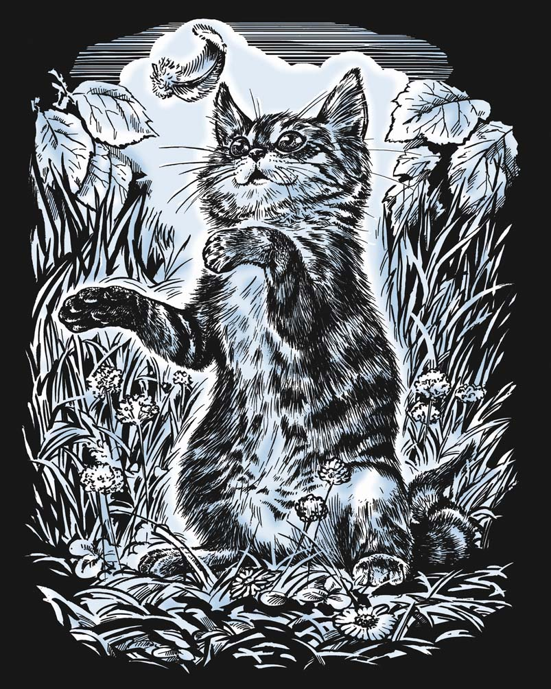 Scratch Art Kitten craft project