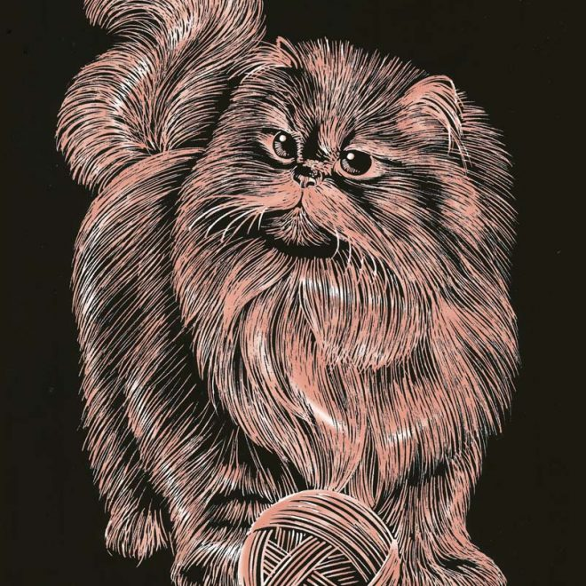 Scratch Art Persian Cat picture from the Artfoil Copper range