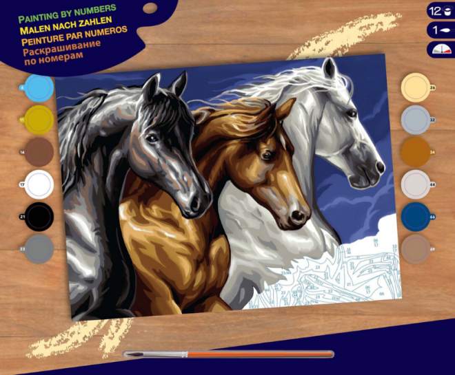 Painting By Numbers Wild Horses