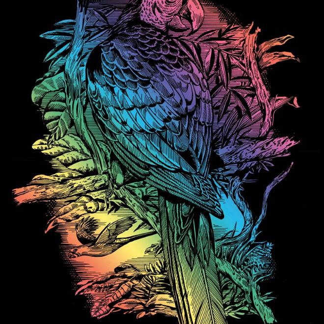Scratch Art Parrot craft kit
