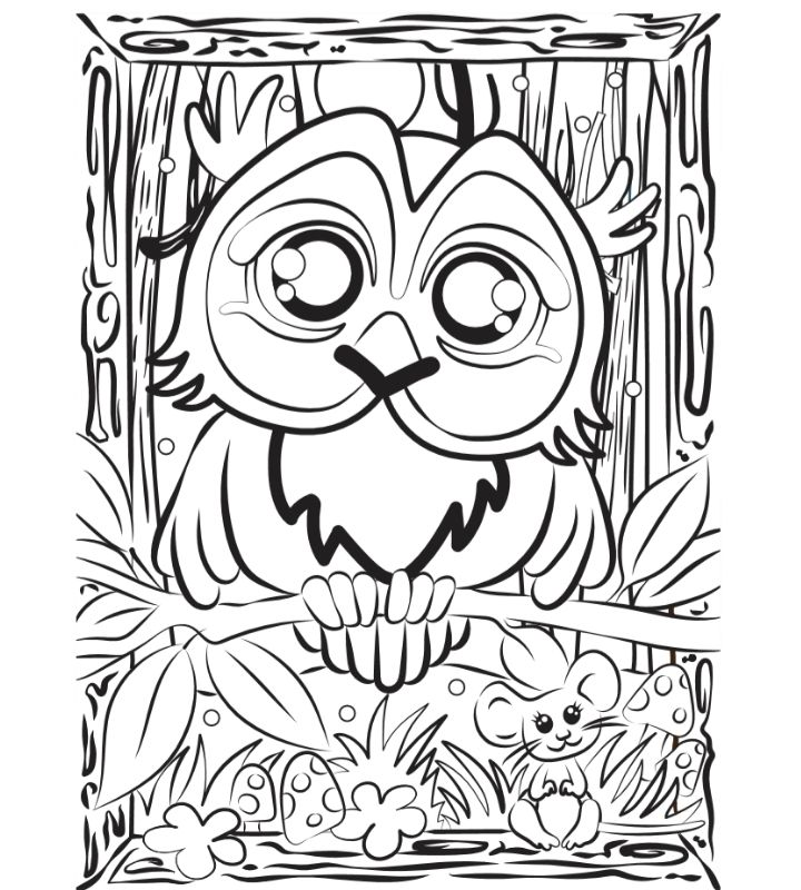 Colour-in Owl Hoot activity sheet for kids