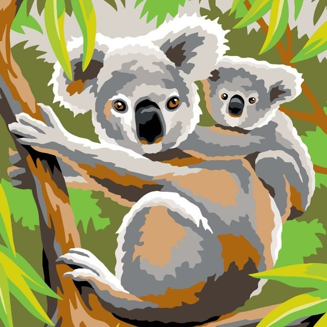 Koala bears from the junior painting by numbers range