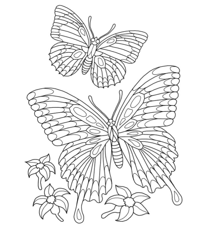 Colouring sheet with butterflies