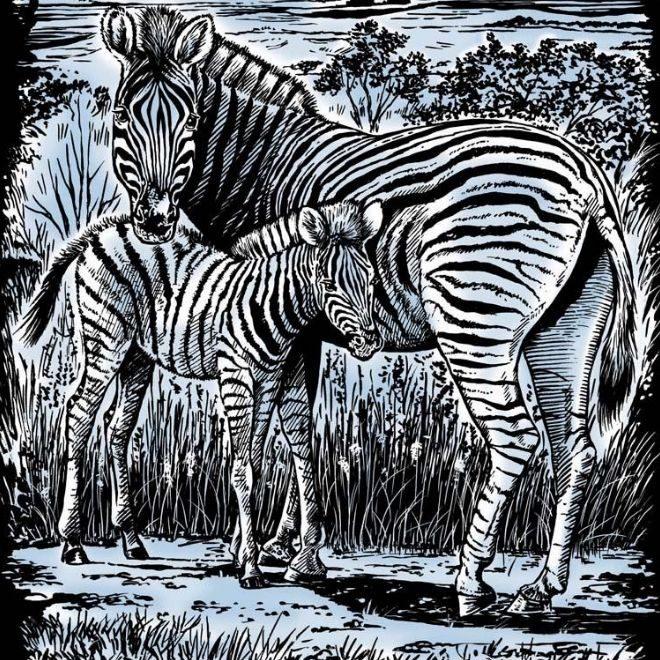 Artfoil Silver Zebra & Foal