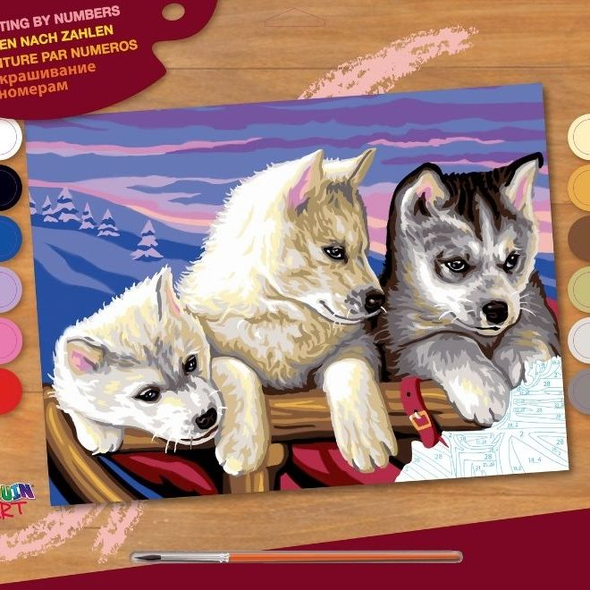 Painting by numbers huskies picture