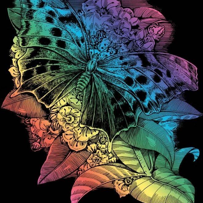 Scratch Art Butterfly